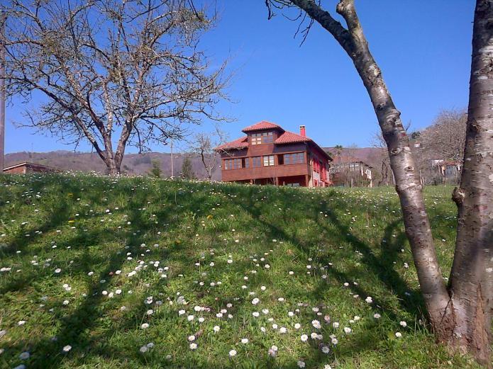 casa rural primavera
