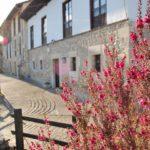Stein Dorfhaus Asturias